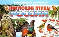 Зимущие птицы России. Обучающие карточки
